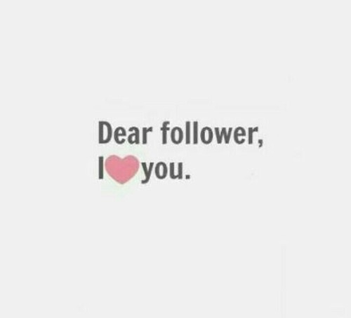 follower i love you